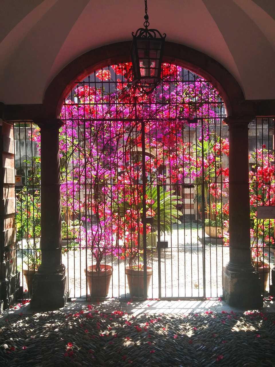 los-jardines-de-catania-corner-volotea-destinos